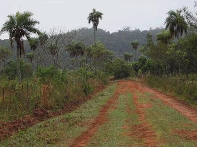 Agricultura en Bolivia