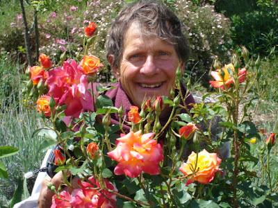 me in roses
