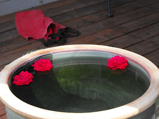water and roses