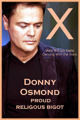 Donny osmond gay comments