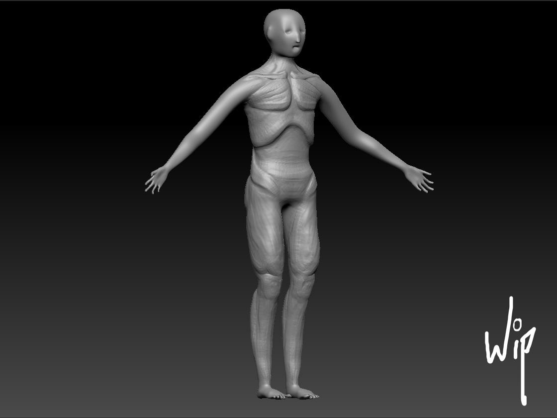 Sam Holguin A Digital Sketchbook Zbrush Human Anatomy Sculpting