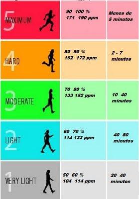 Tipos bajar 10 kilos en dos meses y medio ejercicio hace