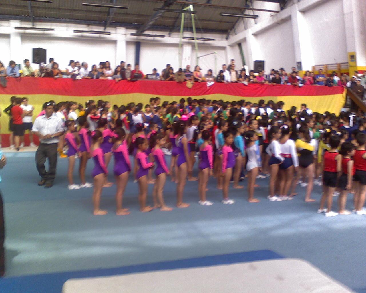Gimnasio infantil nuestra delegacion para el campeonato for Gimnasio abierto