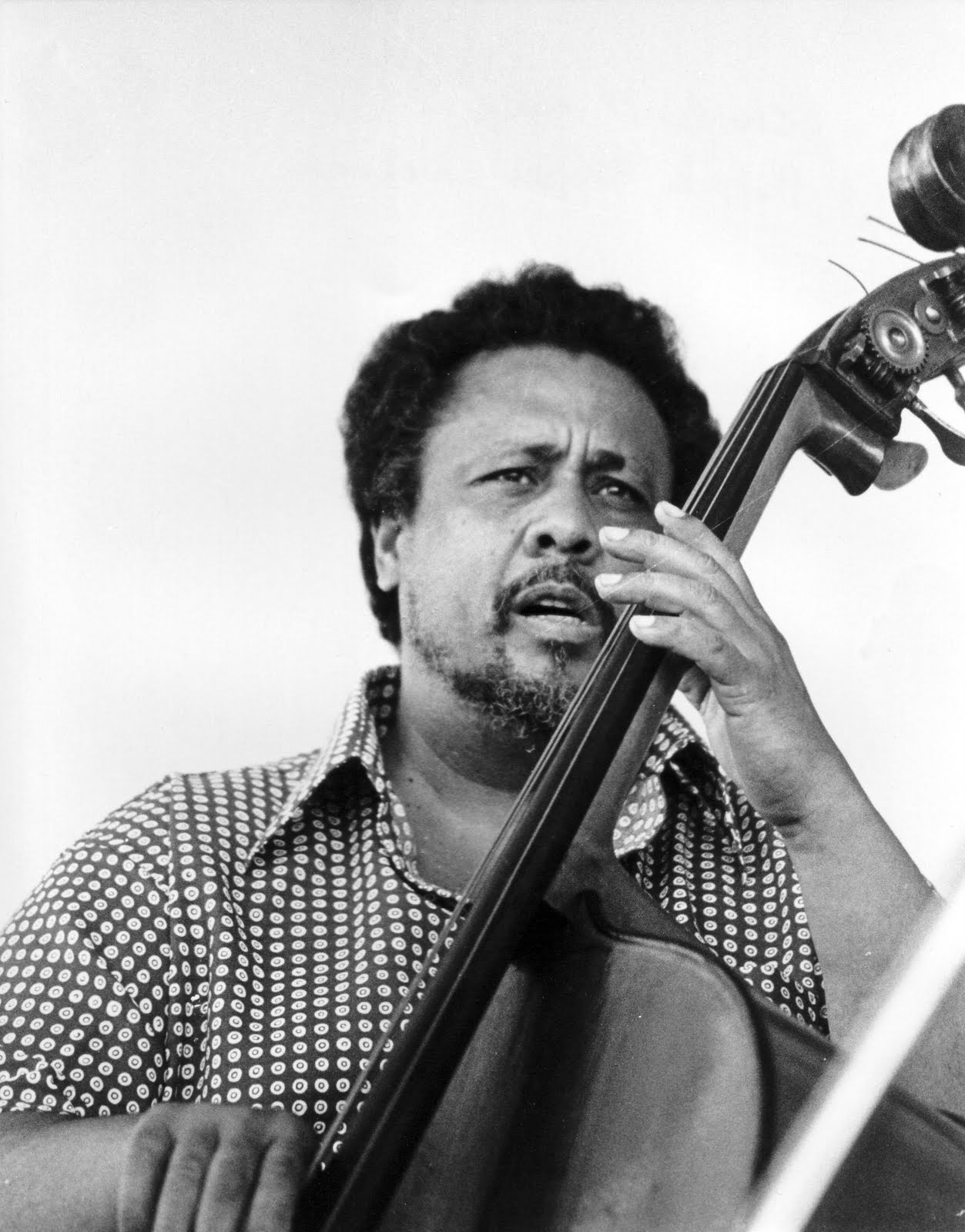 charles mingus 1922-1979 charles mingus fused musical styles drawn from classical, swing, bop, latin, and avant-garde genres to develop a wholly original form of composition in performance, his bass.