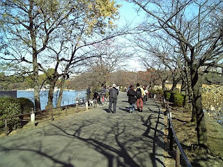 stroll road in shinobazu pond
