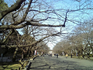 ueno park in winter
