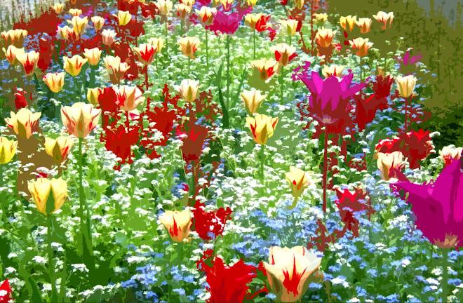 Des fleurs pour la Vie