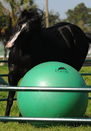 Parelli Green Ball