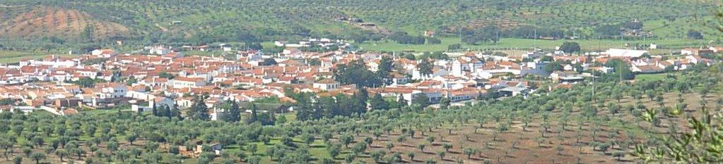 FLORES DE FICALHO