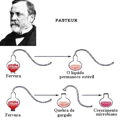 Infusão biologia