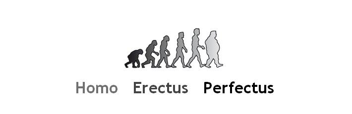 Homo Erectus Perfectus