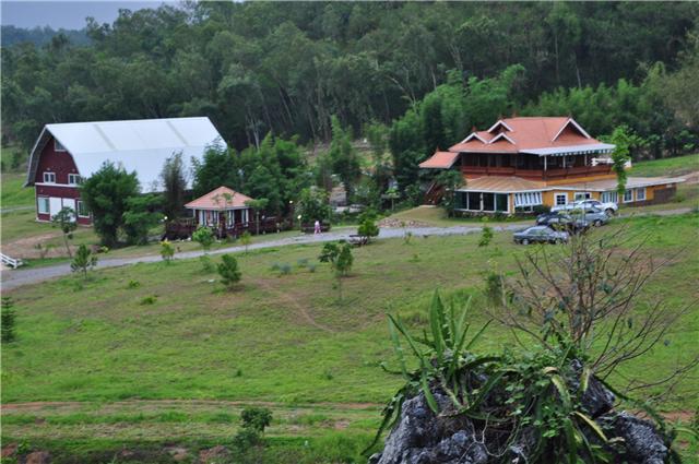 dragon hill resort
