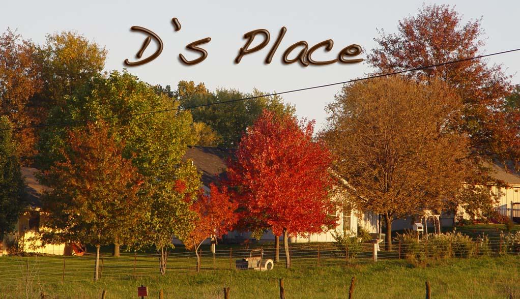 D's Place