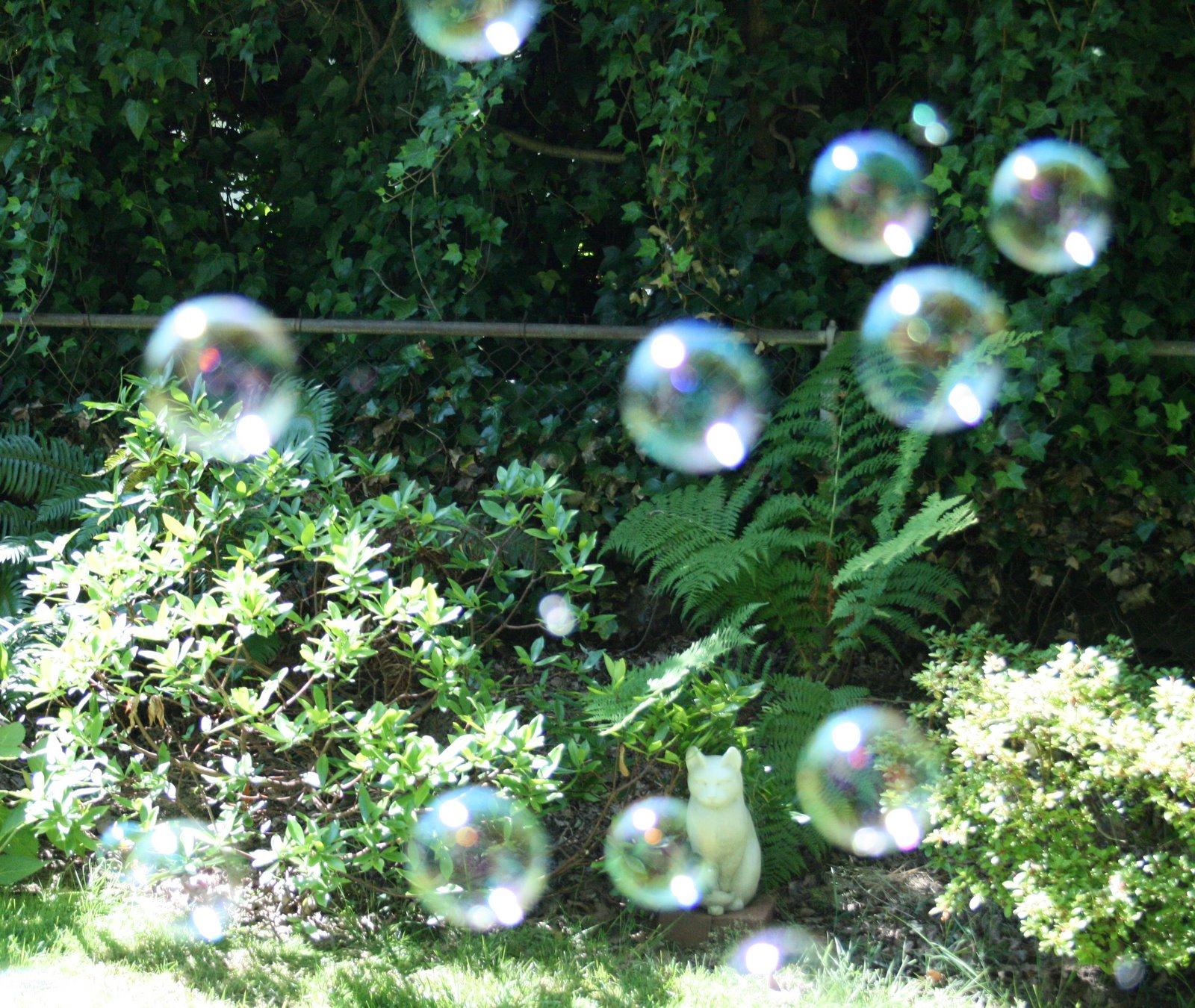 http://3.bp.blogspot.com/_vY53zchMjAg/TD9NmxhqARI/AAAAAAAAEms/j5CbOOGZmyA/s1600/bubbles+006.JPG