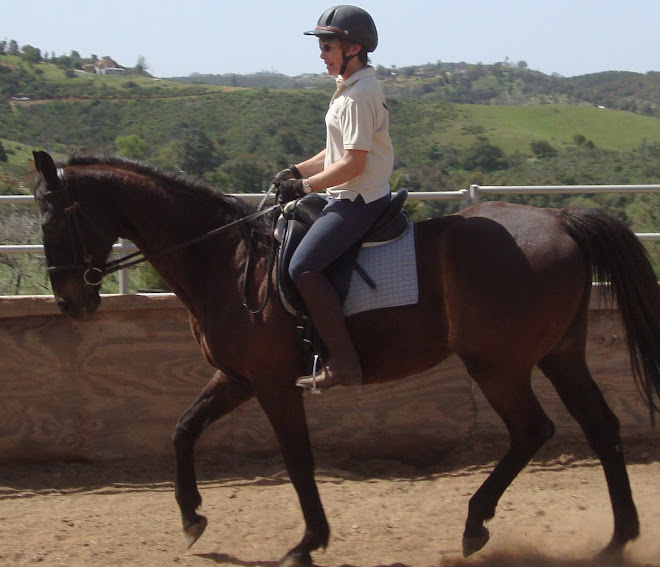 Valerie riding Pow Wow, a thoroughbred gelding up for adoption