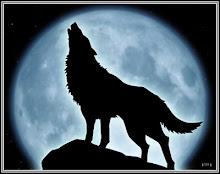 Lobo de Luna