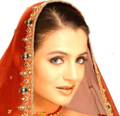 Amisha Patel Hot Wallpapers11