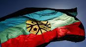 Bandera de los Mapuches