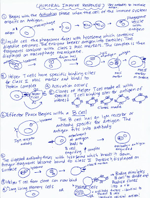 Mary's Biology Page: April 2009