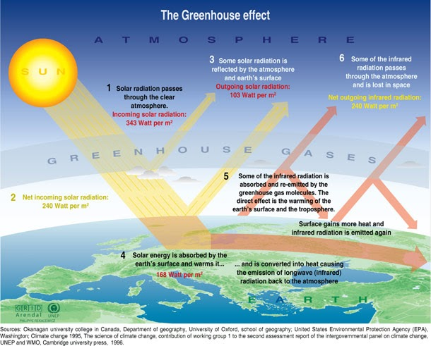 a research on the greenhouse effect A greenhouse works in a similar way solar energy in the form of light creates thermal energy, or heat, that can't escape through the glass this activity mirrors how a greenhouse works, but it's not exactly the same as the greenhouse effect that is taking place in the earth's atmosphere.