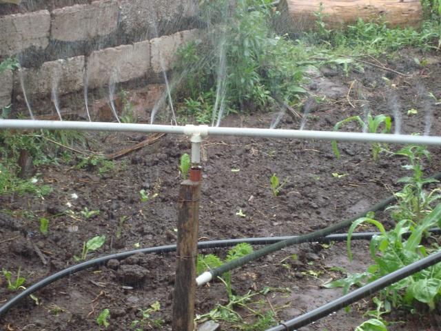 Mi finca integral sostenible innovaciones sistemas de for Aspersores para riego