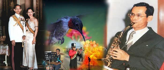 จักรพงศ์ สุขเกษม ดนตรี