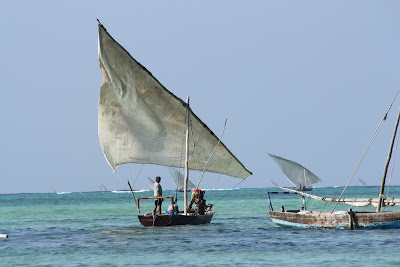 Nungwi-Dhows-Zanzibar-Tanzania-Africa-holiday width=