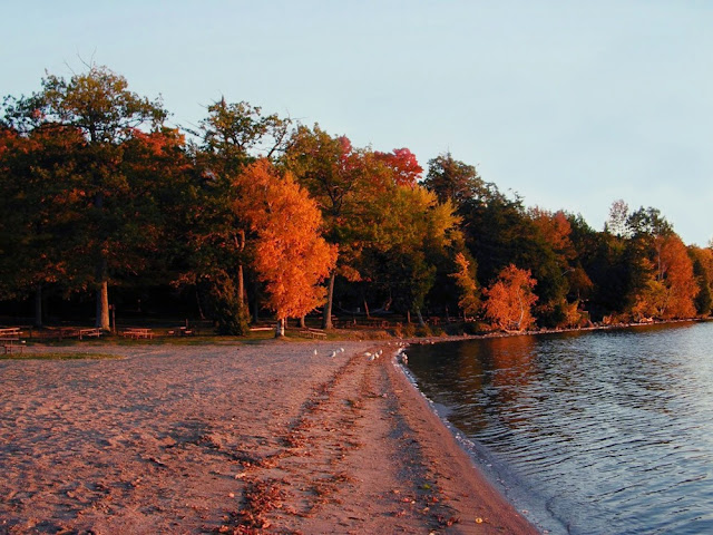 Bass Lake Provincial Park, Oro-Medonte Township near Orillia