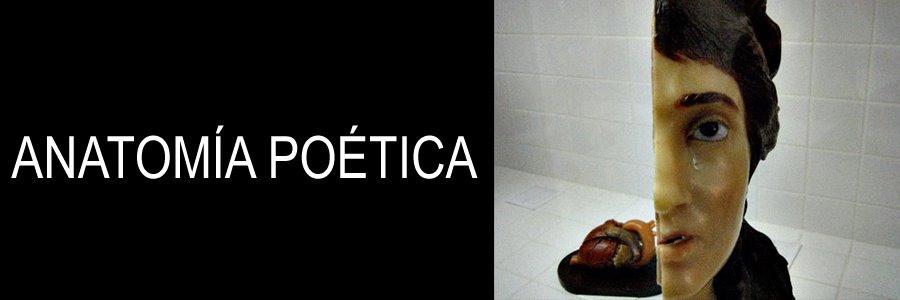 anatomía                           poetica