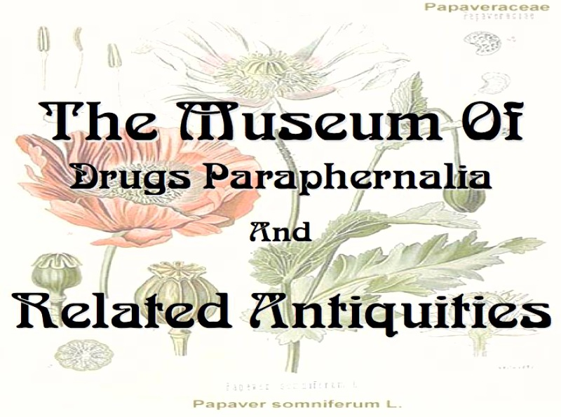 Museum Of Drugs