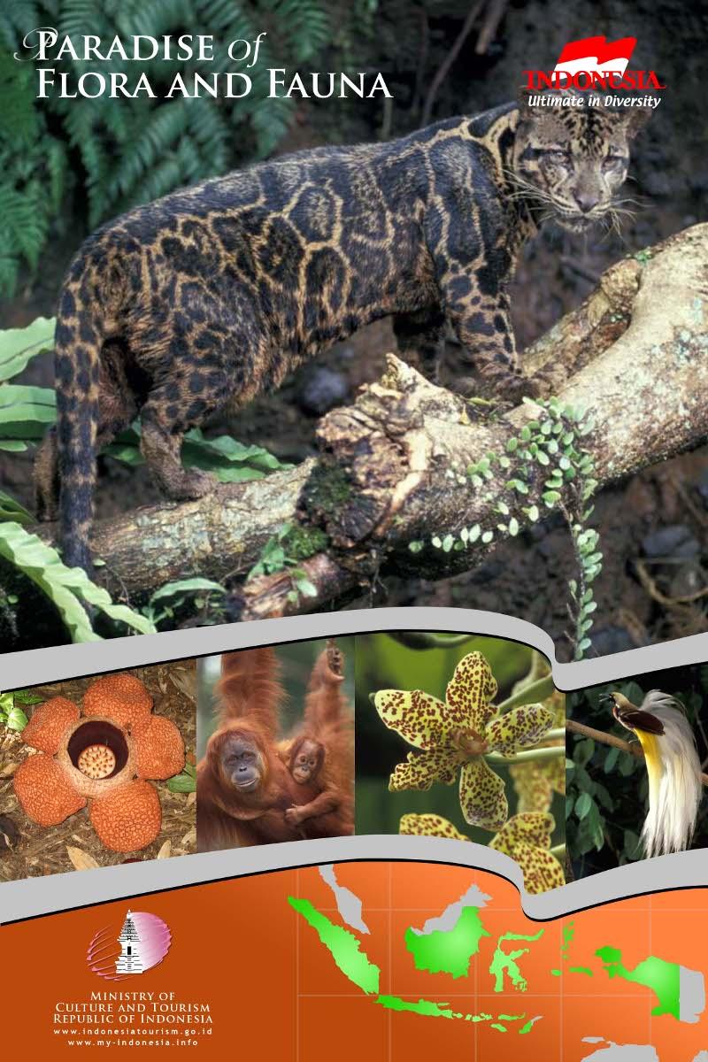 dan lain lain indonesia punya flora dan fauna asli indonesia