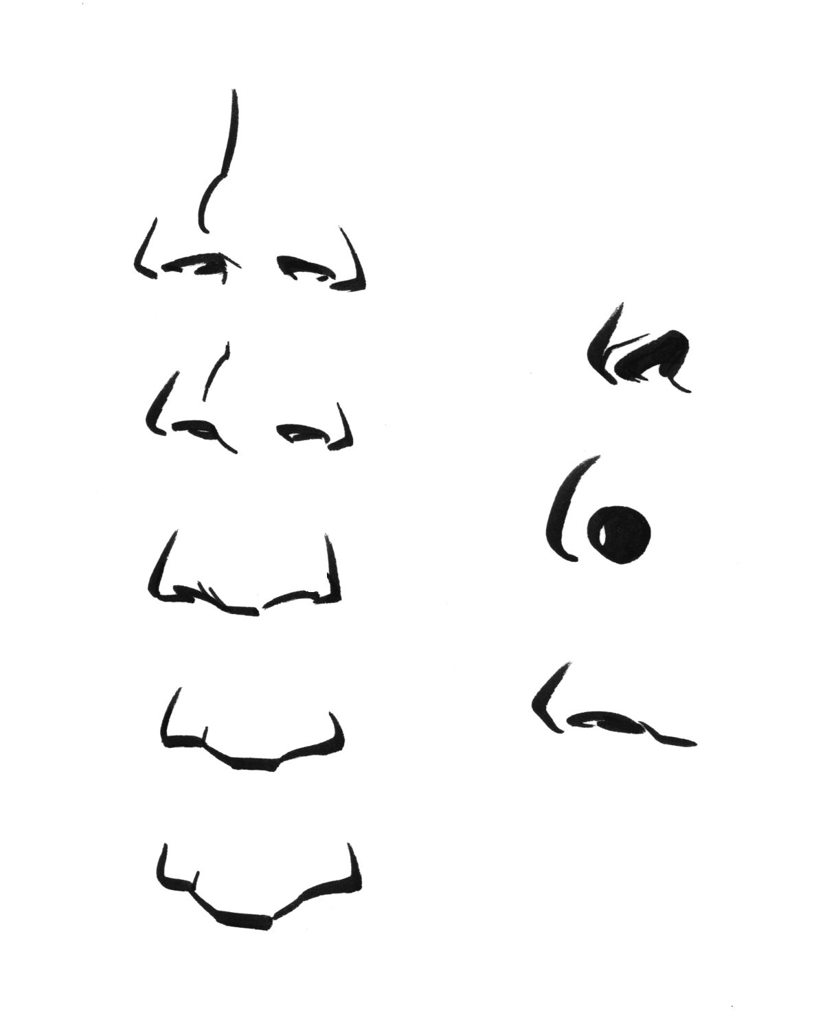 Some Folks Have A Very Turnedup Nose This Example, On The Far Upper Left,