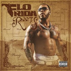 Download Flo Rida Can't Believe It (feat. Pitbull) Mp3