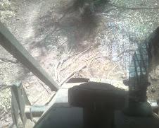 Skidder View