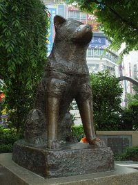 The statue of Hachiko in Shibuya