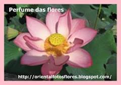 Perfume Das Flores