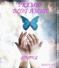 Premio Blog Amigo.