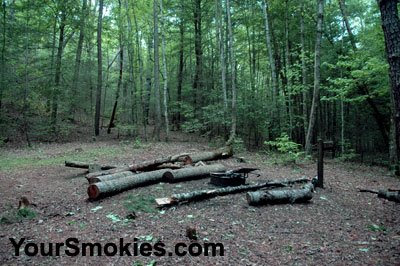 Great Smoky Mountains national park closes 2 backcountry campsites.