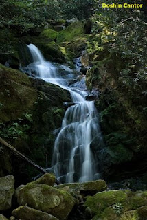 Mouse Falls in Big Creek