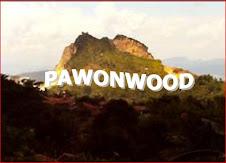 PAWONWOOD
