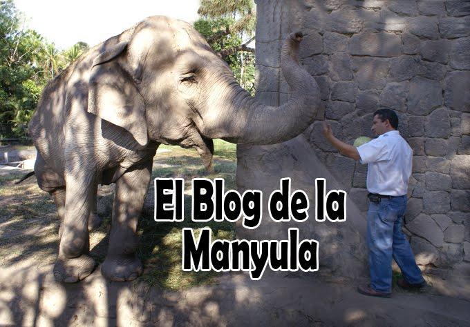 El Blog de la Manyula