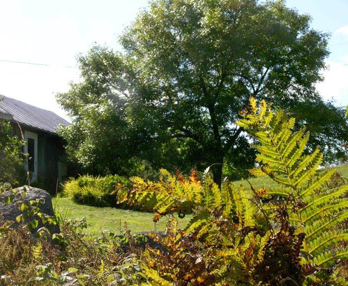 Studio and Garden: September 2010