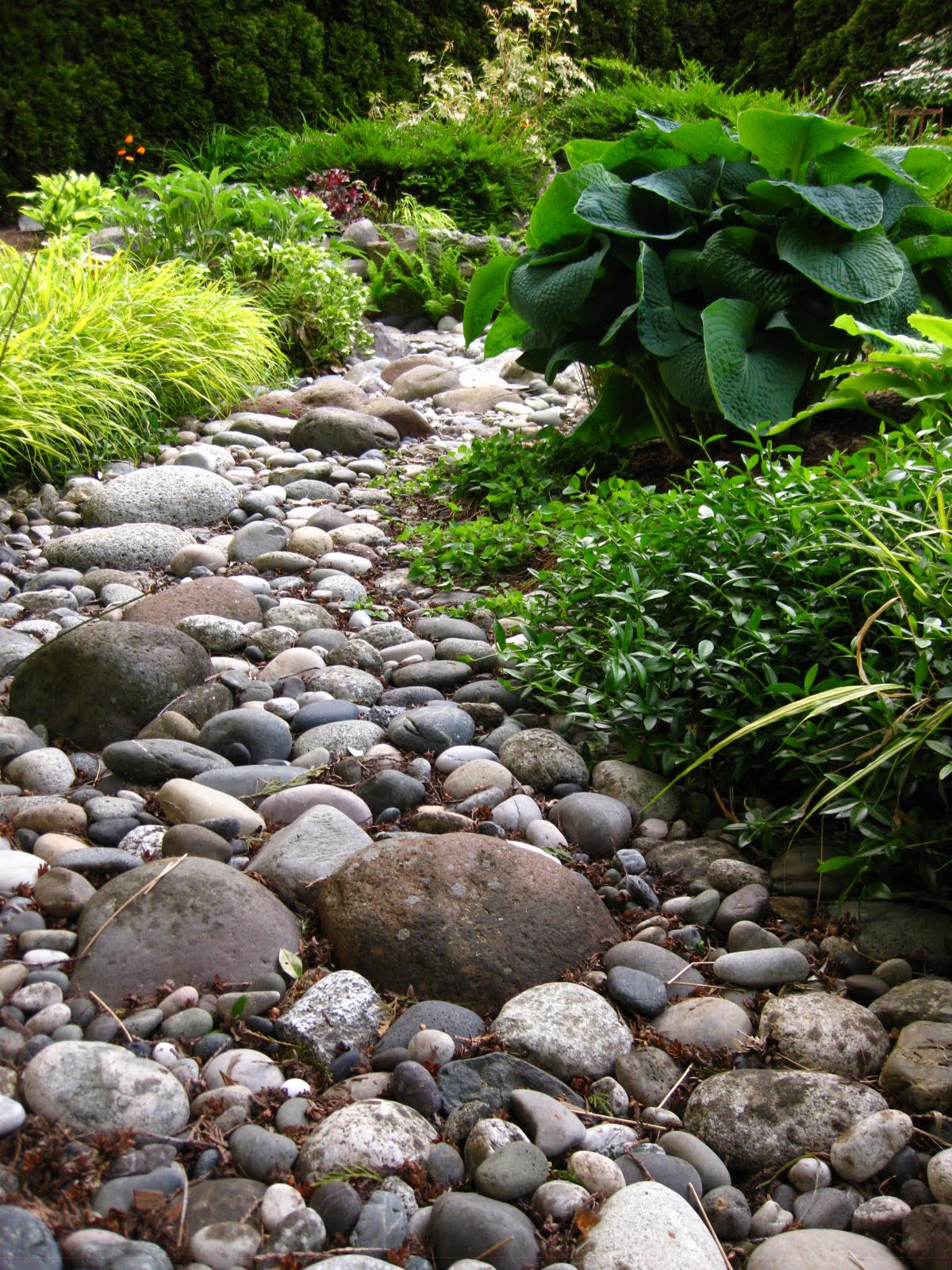 The bicycle gardening chronicles garden swale for River rock landscaping