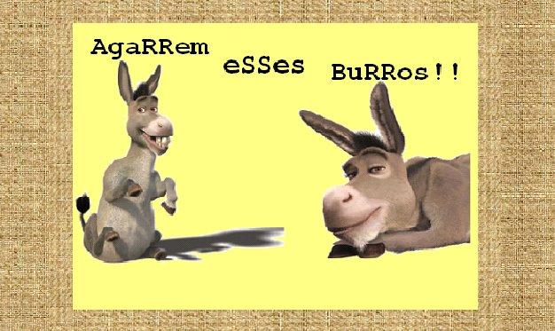 AgaRRem eSSes BuRRos!
