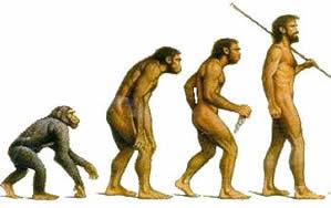 >>> EVOLUÇÃO <<< ?