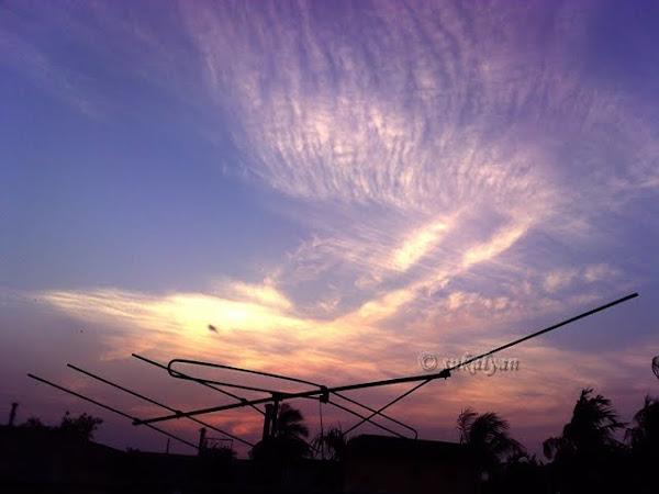 Greetings from the God sunset afternoon at Kolkata photography by Sukalyan Chakraborty
