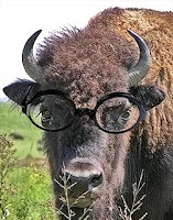 Buffalo Nerd with large glasses