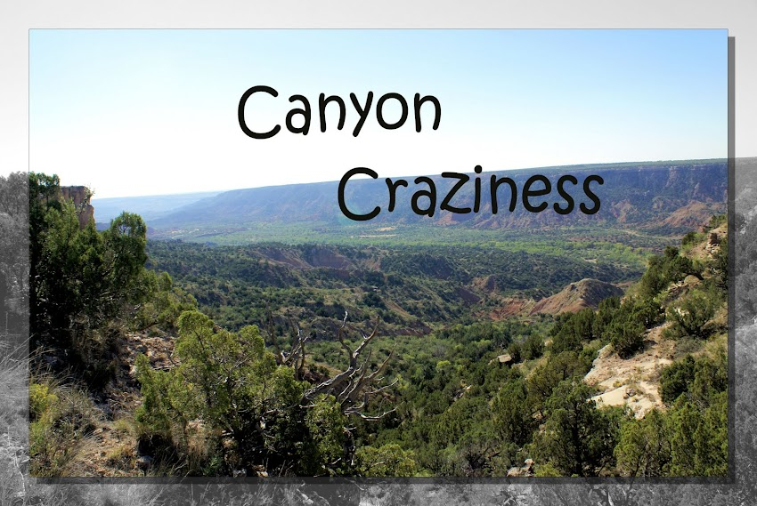 Canyon Craziness