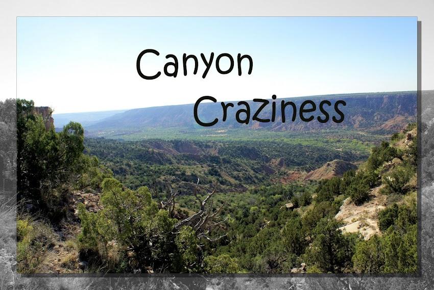 Canyon Craziness