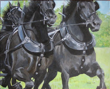 Percheron Power